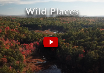 NH Wild Places